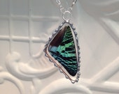 Real Butterfly Wing Soldered Pendant Madagascan Sunset Moth Between Glass Hand Soldered Great Christmas Birthday Gift 24 inch chain