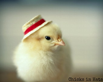 Photo Print 8x10 Chick Wearing A Red Straw Boater Hat Photograph