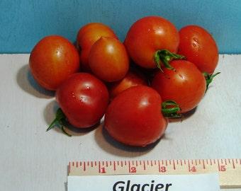 Glacier Heirloom Tomato Seeds Non GMO