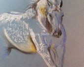 "Original horse artwork pastel sketch 9x12 ""Gambler"""