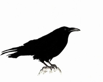 """Raven art print of an original drawing available 5x7"""" or 8x10"""""""