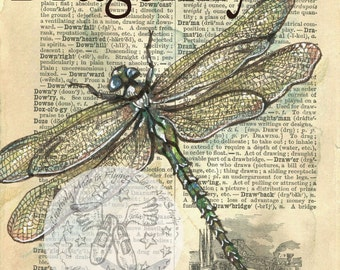 PRINT:  Dragonfly Mixed Media Drawing on 1890's, Distressed, Dictionary Page