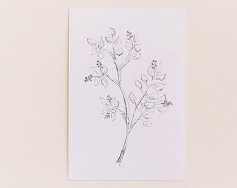 Any 1 Botanical Print