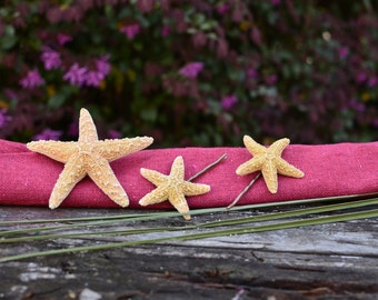 Sugar Starfish Package