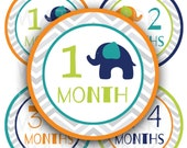 Elephant Baby Boy Monthly Milestone Images - Printable - Digital Collage Sheet  - 4 inch Round Circles - INSTANT DOWNLOAD