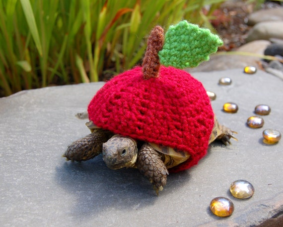 Gemutlich In Englisch : Roter Apfel Schildkröte gemütlich gemacht um zu von MossyTortoise