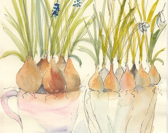 Watercolor Cards Grape Hyacinth Cards Snowdrop Cards Blue and White Spring bulbs  Pen and Wash Cards Watercolour Notecards