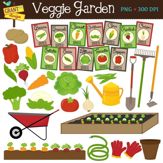 Vegetable Garden Veggie Garden Growing Vegetables Cute