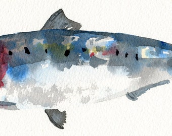 Watercolour Print of a Sardine Fish // Kitchen Art // Gift For Him // Seafood Print // Father's Day