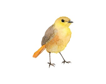 Little Yellow Watercolor Bird - Fine Art Print