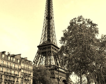 Eiffel Tower at Sunset in Paris, France - 8x10 Sepia Photo City Art Picture