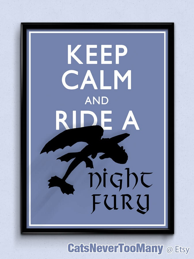 Toothless Dragon Blanket Dragon Toothless Poster