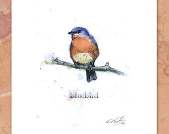 Bluebird signed giclee print