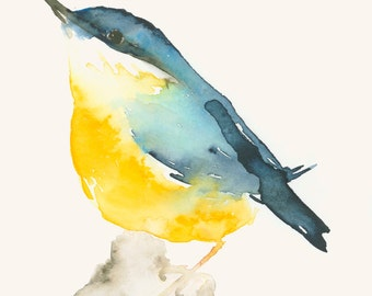 Bird Art Print Blue and Yellow Bird