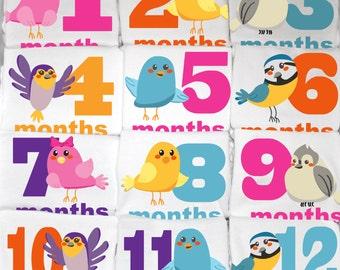 Cute Bird Month to Month Baby Onesie Set, 12 Month Set, Fun Baby Shower Gift