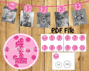 1 year Photo Banner Girl 12 month Picture Birthday Banner Everything One Girl 1st birthday party decorations Pink (DIY Printable PDF File)
