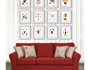 Seashells Home Decor Art Set Of 12 Prints Beach Theme Living Room Wall Hanging 8x10