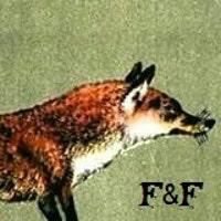 foxandfablevintage