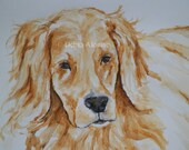 Golden Retriever Original Watercolor Painting Canine Dog by Artist Debra Alouise