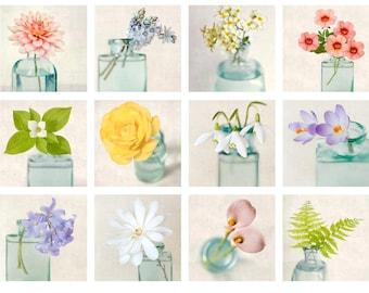 Floral Still Life Mini Portfolio, Flower Photography, Affordable Art Prints, Photo Collection, 5x5 Photos, 5x5 Print Set