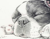 French Bulldog Limited Print from Drawing Dog Art-Carla Smale