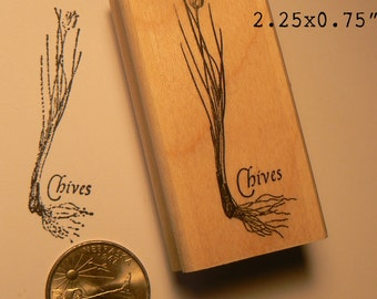 Chives rubber stamp WM P55