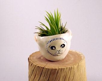 Tiny White Rabbit Ceramic Air Plant Vase