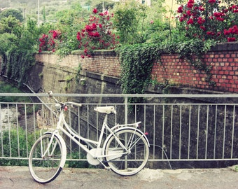 Bicycle Print / Italy travel photograph / white bike art / red roses / bridge 8x10 16x20 print  'Waiting'