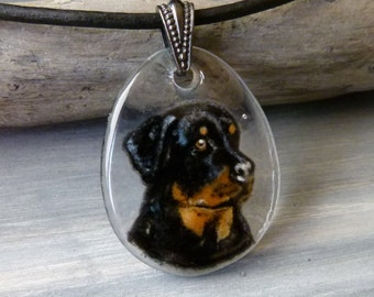 Rottweiler- fused glass pendant