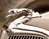 Vintage Greyhound Hood Ornament Photograph Classic Car Fine Art 5 x 7 Photography Man Cave Decor Sepia Style Black and White Brown Silver