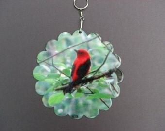Scarlet Tanager Wind spinner