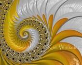 Orange Yellow White Seashell Fractal Fine Art Print 8x10