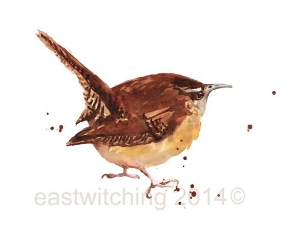 WREN Print, birdie, wren painting, gift for bird watcher, cabin decor