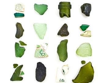 Green Sea Glass and Beach China - 20 x 20 Fine Art Beachcombing Photograph