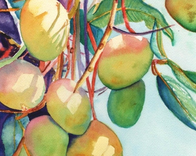 Mangoes 8x10 print from Kauai Hawaii fruit pink green sky blue sunlight orange mango