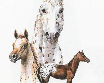 HORSES -APPALOOSA  on Twelve Identical 6 inch Fabric squares for quilting or sewing