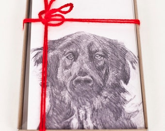 Jake: Shelter Dog Series Box of (10) 5x7 Blank Greeting Cards with Envelopes