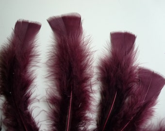 TURKEY FEATHERS Loose Feathers , Auburn Brown BOGO - 11