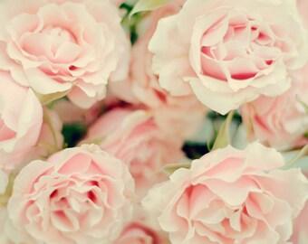 Still Life Photography - Peach Roses Bouquet Still Life Floral Print Pastel Romantic Decor Nursery Girls Room Art English Roses Photo