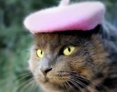 Pink French Beret for Cats or Dogs - Hand Felted Wool French Beret