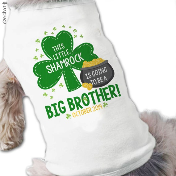 Dog shirt St. Patrick's Day big brother to be little shamrock pregnancy announcement dog Tshirt