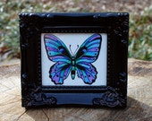 Butterfly No. 2 Original by Cora Rountree