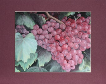 Reproduction, Red Grapes Reproduction, Matted reproduction, 8 X 10 reproduction, Matted to fit standard 11 X 14 inch frame