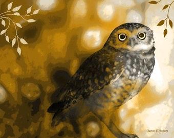 Elf Owl Art, Rustic Decor, Giclee Print, Woodland Animal, Bird Art, Cabin Decor, Wildlife Art, Digital Print, Wall Hanging, 8 x 10