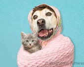 My Kitty, large original photograph of a Boxer dog in pink sweater snuggling with her new kitten