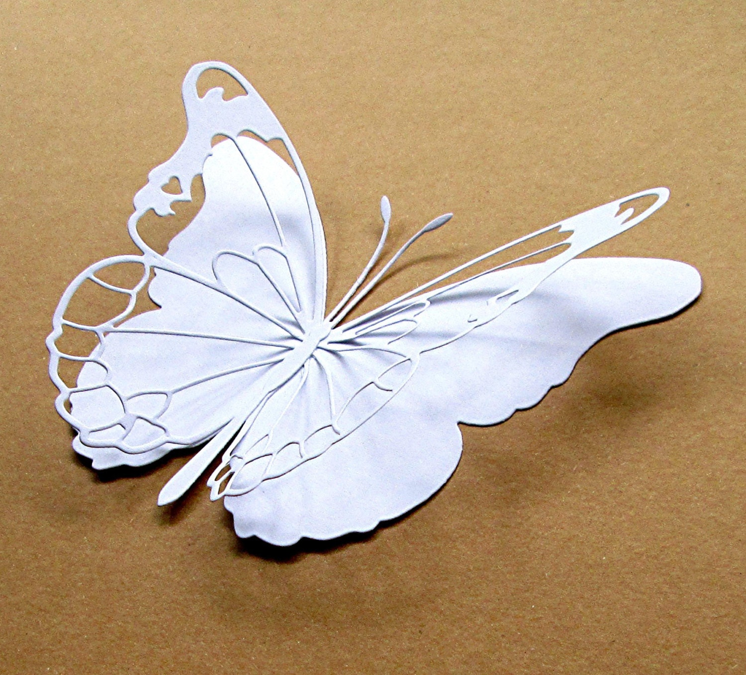 5 butterflies white large 3d paper by cottoncandylane for White paper butterflies