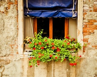 Flower Photography, Window Flower Box Italy Photo Planter Flowerbox Red Geraniums Print Wall Art ven70