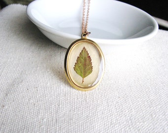 Pressed Leaf Necklace Botanical Jewelry Resin Bridal Naturalist Autumn Fall Green Red Spirea Garden Gift Real Leaf Plant Minimalist