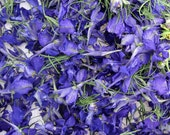 Blue Larkspur, Dried Flower, Confetti Flowers, Petals, Flower Girl, Basket, Tossing Flowers, Wedding Decor, Purple Dried Larkspur, 5 US cups