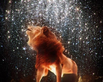 Seeking the Lion 11x14 print